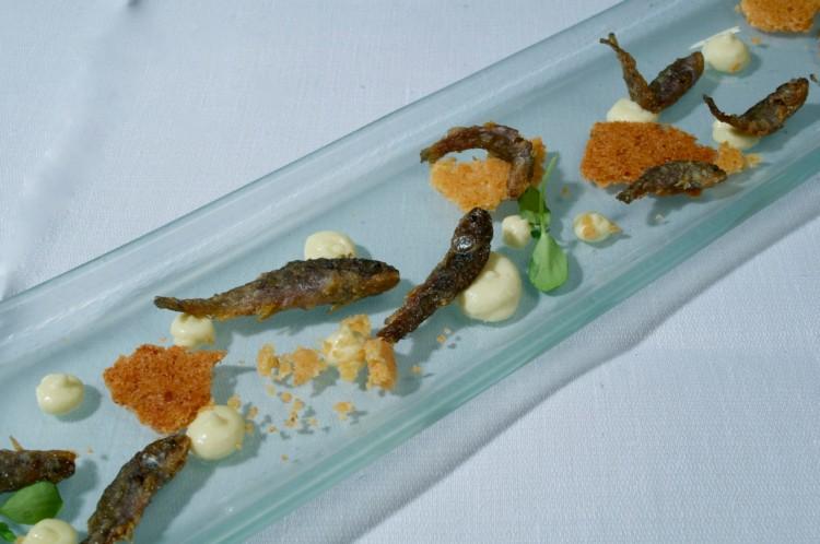 Pesci d 39 acqua dolce e agrumi le vescovane for Pesci acqua dolce on line